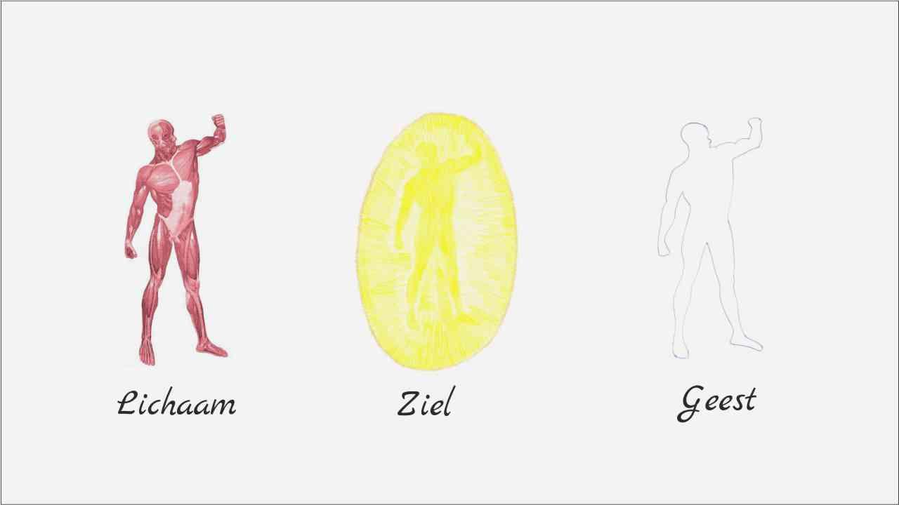 De mens is een drie eenheid