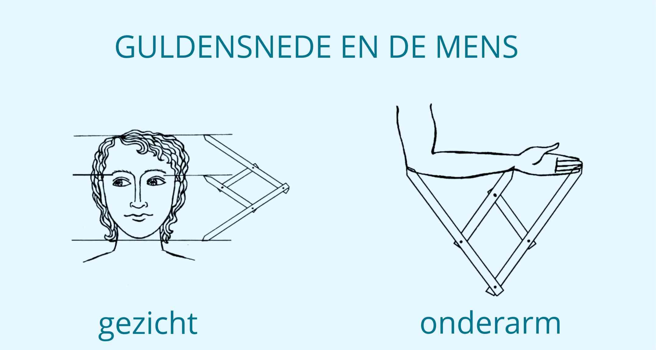 Geometrie in de natuur